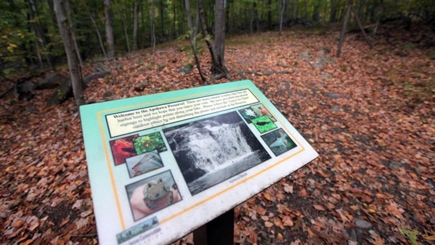 September 21, 2014: This photo shows the Apshawa Preserve in West Milford, N.J. A 22-year-old Edison man named Darsh Patel lost his life at the preserve after being attacked by a black bear while hiking with some friends Sunday. (AP Photo/The New Jersey Herald, Daniel Freel)