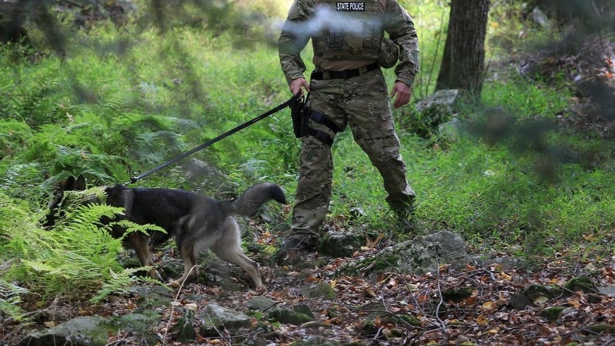 K9 units search for suspect Eric Frein, Wednesday, Sept. 24, 2014 in Canadensis, Pa.  Frein, a suspect in the fatal ambush of a trooper has occasionally made himself visible to officers before melting back into the forest, and police found empty packs of Serbian-branded cigarettes and soiled diapers believed to have been left by him, Pennsylvania State Police said Wednesday.   (AP Photo/The Times-Tribune, Jake Danna Stevens)  WILKES BARRE TIMES-LEADER OUT; MANDATORY CREDIT