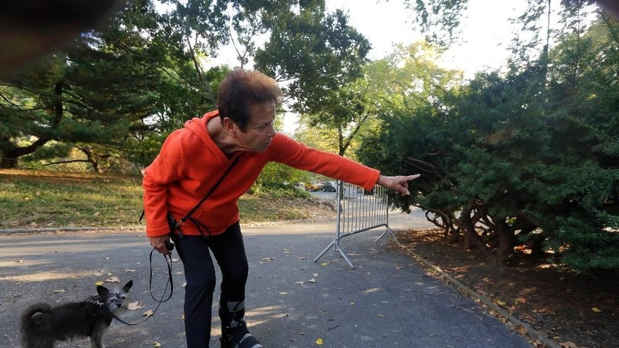 Florence Slatkin, with her dog Paco, points to the spot where she and a friend discovered a dead bear cub Monday in New York's Central Park, Tuesday, Oct. 7, 2014. Slatkin, a longtime resident of the Upper West Side, said that they were leaving the park when her friend's terrier spotted something near a bicycle lying on the ground. The cub's head was on top of the back bicycle wheel, Slatkin said. (AP Photo/Richard Drew)