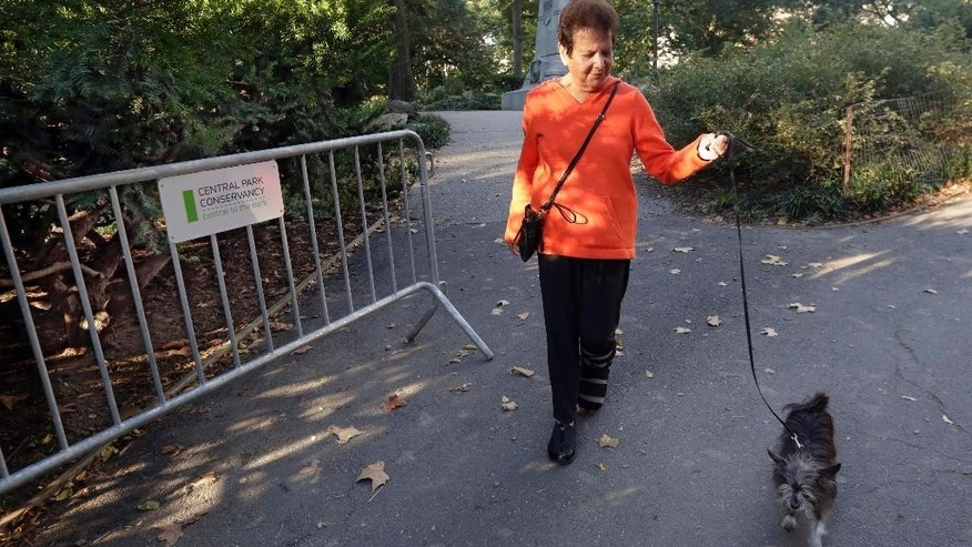 Florence Slatkin walks her dog Paco on Tuesday, Oct. 7, 2014, adjacent to the spot, behind the barrier at left, where she and a friend discovered a dead bear cub Monday in New York's Central Park. Slatkin, a longtime resident of the Upper West Side, said that they were leaving the park when her friend's terrier spotted something near a bicycle lying on the ground. The cub's head was on top of the back bicycle wheel, Slatkin said. (AP Photo/Richard Drew)