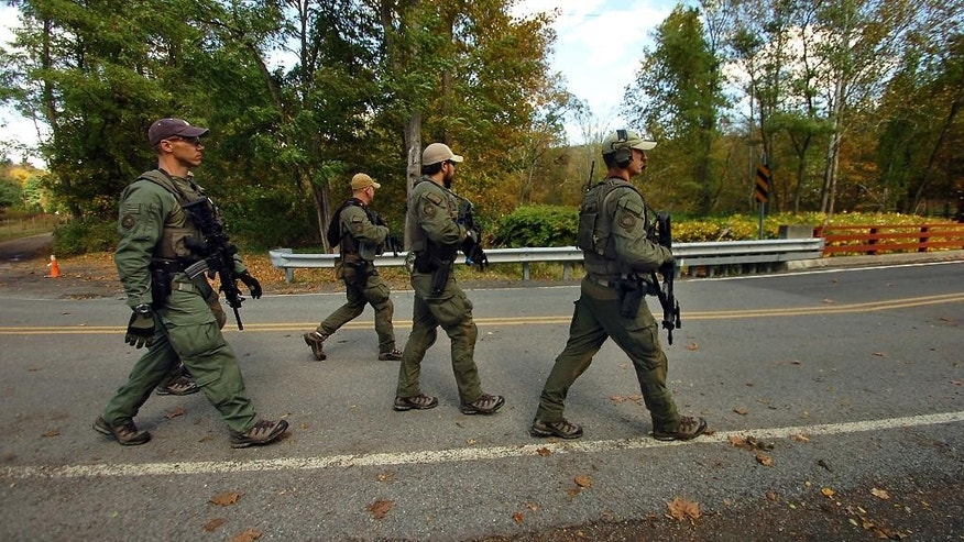 Members of the FBI SWAT team walk to the woods Wednesday, Oct. 8, 2014, in Price Township near Canadensis, Pa., searching for killer Eric Frein. A massive manhunt has been underway for 31-year-old Frein in the rugged terrain of the Pocono Mountains since Sept. 12. The self-taught survivalist is charged with killing Cpl. Bryon Dickson and seriously wounding Trooper Alex Douglass outside their barracks in Blooming Grove. (AP Photo/Scranton Times & Tribune, Butch Comegys)  WILKES BARRE TIMES-LEADER OUT; MANDATORY CREDIT
