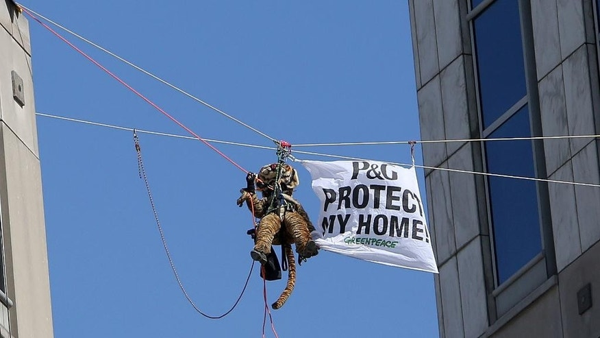 FILE - This Tuesday, March 4, 2014 file photo shows Greenpeace activists, including this one dressed in a tiger suit, rappel and hang banners in protest of Procter & Gamble outside of the company's headquarters, in downtown Cincinnati, Tuesday, March 4, 2014. Eight Greenpeace activists who staged a stunning protest at Procter & Gamble Co. headquarters are due back in Cincinnati to accept a plea agreement offered at P&G's request. (AP Photo/The Cincinnati Enquirer Amanda Rossmann, File)
