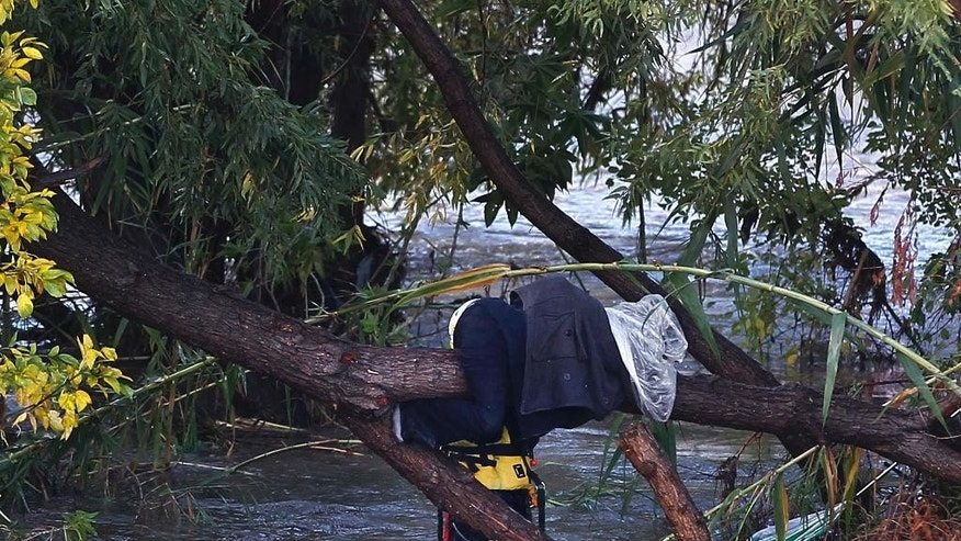 Los Angeles Fire Department Swift-Water Rescue Team member saves one of two people who were stranded clinging to trees in the middle of the storm-swollen Los Angeles River in Los Angeles Friday, Dec. 12, 2014. One person was taken to a hospital in fair condition.  (AP Photo/Nick Ut)