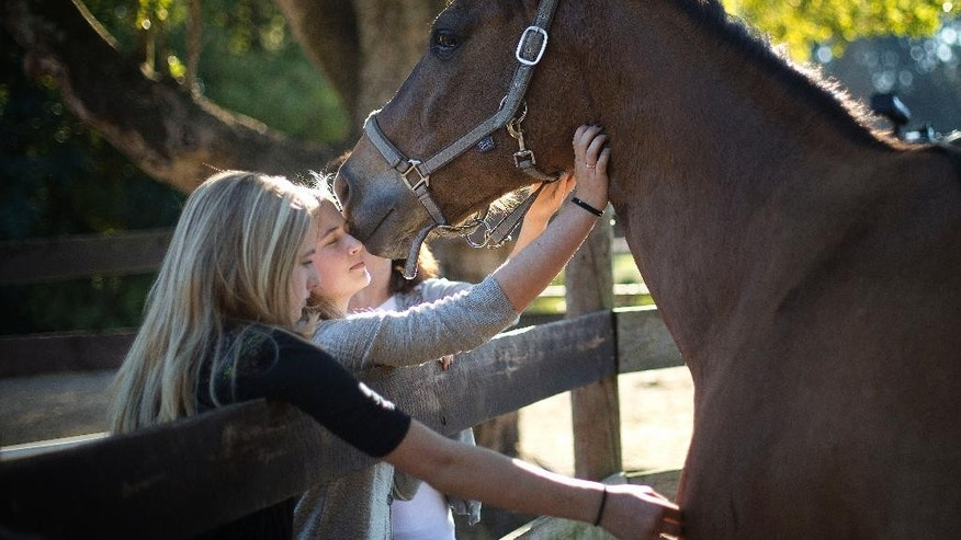 FILE - In a Tuesday, Dec. 16, 2014 file photo, Izabella Gosttschall, right, and her sister, Sophia, talk to one of the remaining horses at the Masterpiece Equestrian Center in Davie, Fla. Izabella recently lost her horse to a batch of feed tainted by additives safe for other livestock but toxic to horses. The Masterpiece Equestrian Center, where 22 horses were poisoned by tainted feed, has reached a settlement with the company that produced and sold the feed. Andy Yaffa, the attorney representing the equestrian center and the owners of 20 of the horses said Monday, Dec. 29, 2014, that the terms of the settlement are confidential, but his clients will be able to care for their ailing horses and purchase new horses. (AP Photo/J Pat Carter, File)
