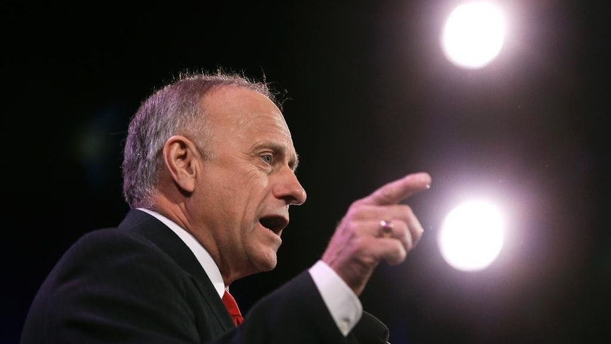 Rep. Steve King, R-Iowa speaks during the Freedom Summit, Saturday, Jan. 24, 2015, in Des Moines, Iowa. (AP Photo/Charlie Neibergall)