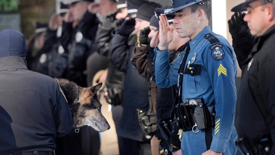 Feb. 13, 2015: In this photo, Sgt. Robert Burke of the Maine State Police salutes along with other officers from local communities as Canine Officer Shane Stephenson of the South Portland Police Department carries Sultan, a retired police dog into the Yarmouth Veterinary Center where he was euthanized in Yarmouth, Maine. (AP/The Press Herald, Shawn Patrick Ouellette)