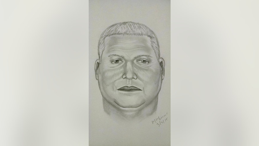 This image released Wednesday, March 4, 2015, by the Wilson County, N.C. Sheriff's Office, shows a composite sketch by investigators of one of the suspects in a heist of millions of dollars in gold bars from a truck on a North Carolina interstate highway on Sunday, March 1. Authorities have said that three armed robbers drove up while the truck was having mechanical problems and stole 275 pounds of gold bars worth $4.8 million. (AP Photo/Wilson County Sheriff's Office)