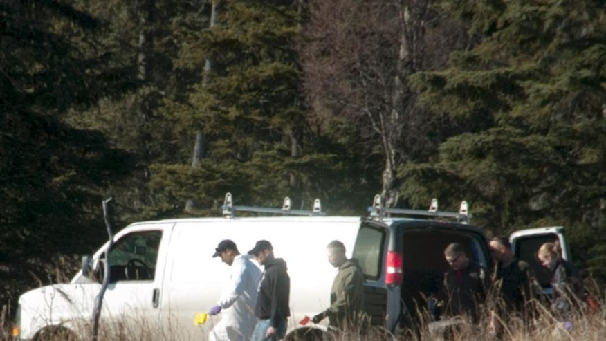 Investigators comb the woods between Alpine Drive and Borgen Avenue on Sunday, March 22, 2015 after finding the remains of what Kenai Police believe to be a family that has been missing for nearly 10 months from their Kenai, Alaska home. While most of the land in the immediate area is state or federally owned, the place where police and the Federal Bureau of Investigation investigators is focusing their efforts, is a privately owned parcel which belongs to a woman from Sterling, Alaska. (AP Photo/Peninsula Clarion, Rashah McChesney)
