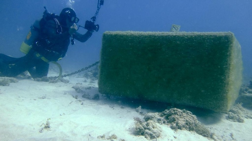 A member of a local citizens group, Osamu Makishi, inspects the damage to coral reefs caused by concrete anchors and chains that were thrown into the sea for a drilling survey in Oura bay, near a planned relocation site, in Nago, Okinawa Prefecture, Japan. The governor of the southern Japanese island of Okinawa has ordered a branch of the Defense Ministry  to suspend all work at the site where a key U.S. military air base is to be relocated. The U.S. and Japan reached the relocation agreement in 1996. (AP Photo/Emily Wang)