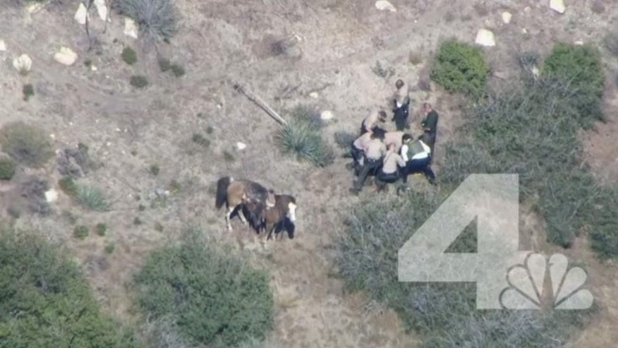 In this frame from video provided by KNBC-TV, officers surround a man Thursday, April 9, 2015, near Apple Valley, Calif. A Southern California sheriff on Thursday ordered an immediate investigation after deputies were recorded beating and kicking a man who fled in a car and on horseback. (AP Photo/KNBC-TV) MANDATORY CREDIT