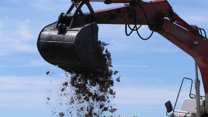In this April 16, 2015 photo, a hydraulic shovel dumps whelk shells into Barnegat Bay in Berkeley Township, N.J. as part of a project by the American Littoral Society environmental group to re-establish an oyster colony in the bay. Oyster seedling will attach themselves to the whelk shells and begin to grow. The bumpy colonies should also help blunt the impact of waves from future storms like Superstorm Sandy.(AP Photo/Wayne Parry)