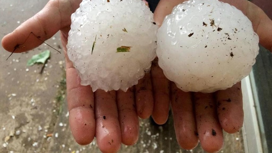 This April 26, 2015 photo provided by Ben McMillan shows two large hailstones that fell near Rising Star, Texas, about 150 miles southwest of Dallas.  A severe storm system that swept across parts of Texas over the weekend brought numerous reports of tornadoes, damage to buildings, large hail and several inches of rain, the National Weather Service said Monday, April 27, 2015. (Ben McMillan via AP)