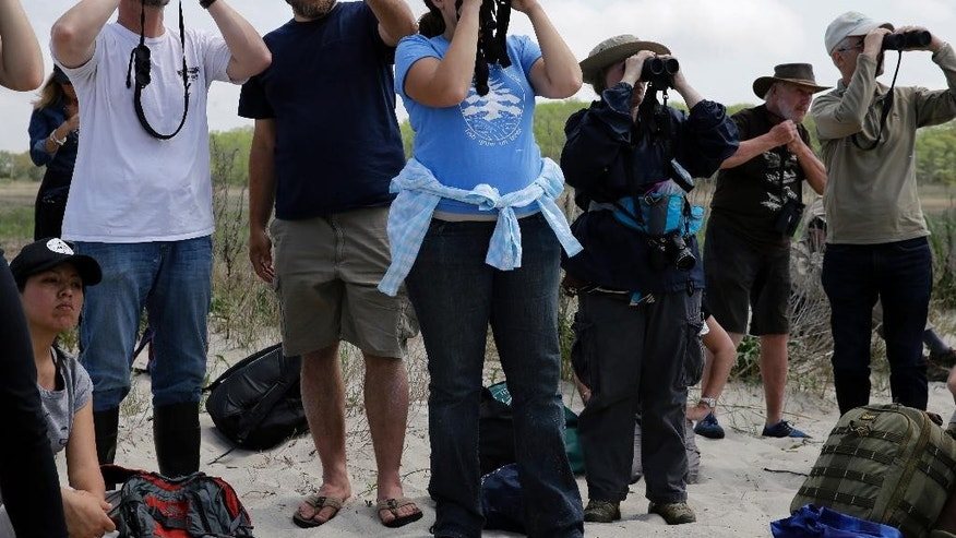 In this Monday, May 11, 2015 photograph, Shane Godshall, second left, of the American Littoral Society, stands with others as they look for shorebirds, in the Reeds Beach section of Middle Township, N.J. A crash program to restore New Jersey bay and ocean beaches wrecked by Superstorm Sandy appears to have succeeded in saving tens of thousands of shorebirds that otherwise might have died after the 2012 storm wiped out their feeding grounds. (AP Photo/Mel Evans)