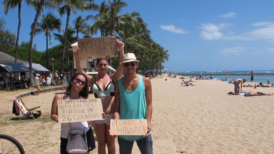 May 23, 2015: Pohai George, left, Ashley Montogmery and Nathaniel Whittaker, right, protested against Monsanto at a Waikiki Beach rally in Honolulu.