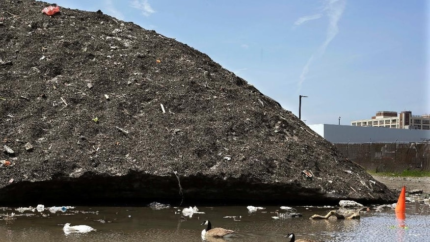 Canada geese swim beneath a debris-covered snow pile, lingering after the record-setting winter, Thursday, May 28, 2015, the Seaport District in Boston. A 75-foot-high snow mound in the Seaport District has been reduced to a three-story pile of dirt and trash, including bicycles, traffic cones and even half a $5 bill, that remains encrusted in solid ice. Crews have been working for six weeks to clean away the trash as it breaks free from the mound. So far, they have pulled 85 tons of debris from the pile. (AP Photo/Elise Amendola)