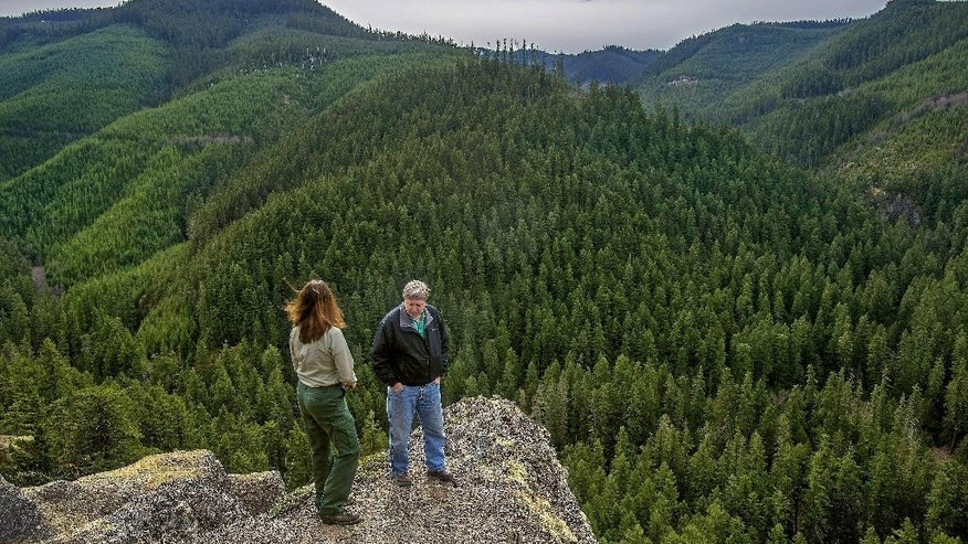 In this photo taken March 13, 2015, Steve Johnson, right, the acting district ranger of the Baker-Snoqualmie National Forest, stands with Mary Coughlin, left, of the U.S. Forest Service, overlooking an area near Greenwater, Wash. that would typically have 7 or 8 feet of snow cover in March. Record-low mountain snowpack means there won't be much melting snow to replenish streams and rivers this summer when migrating fish, and farmers who rely on irrigation need it most as Washington state prepares for the worst drought in a decade. (Dean J. Koepfler/The News Tribune via AP)