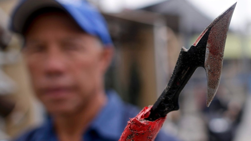 May 27, 2015: Keith Yip, curator of mammals at SeaWorld San Diego, holds the homemade spear recovered from a sea lion impaled by the weapon.