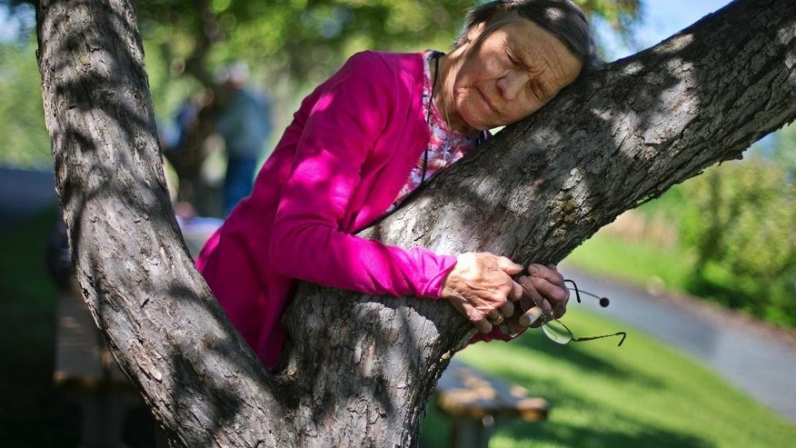 "In this Thursday, June 4, 2015 photo, Anny David from Blue Bell, Penn., participates in a healing exercise at the American Society for Dowsing's annual convention in Lyndonville, Vermont. ""You relax, you let everything go out of your mind and you let the tree talk to you,"" she said. ""I felt like I had a baby in my hands."" Practitioners of dowsing use metal rods, forked sticks and pendulums and what they say is their subconscious to tap into a universal natural knowledge. (AP Photo/Robert F. Bukaty)"
