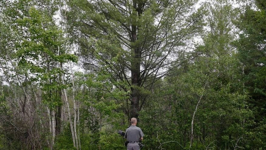 A law enforcement officer stands on a road and looks into the forest near Dannemora, N.Y., Friday, June 12, 2015.  Squads of law enforcement officers are heading out for a seventh day, searching for David Sweat and Richard Matt, two murderers who escaped from Clinton Correctional Facility, a maximum-security prison in northern New York. (AP Photo/Seth Wenig)