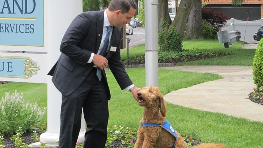 June 4, 2015: Matthew Fiorillo, owner of the Ballard-Durand funeral home in White Plains, N.Y., plays with his dog Lulu on the funeral home's lawn.
