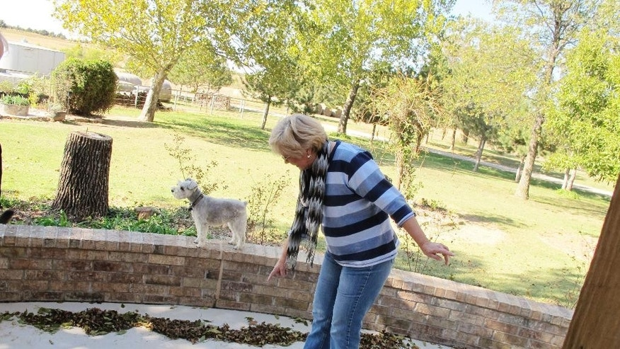 FILE - In this Oct. 24, 2013 file photo, Prague, Okla. resident Mary Reneau, 70, points to the hairline cracks that have formed in the concrete of her patio that she says were caused by several earthquakes that have rumbled through her town in the past two years. The more and faster oil and gas companies pump their saltwater waste into the ground, the more they have triggered earthquakes in the central United States, a massive new study from the University of Colorado found. Results were published in the journal Science on Thursday, June 18, 2015. Although Texas, Arkansas, Kansas and other states have seen increases in earthquakes, the biggest jump has been in Oklahoma. (AP Photo/Justin Juozapavicius)
