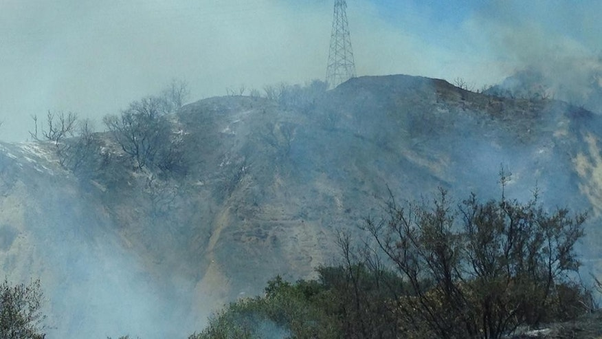 A wildfire that erupted on the shoulder of the Interstate 5 freeway burns through heavy brush in Santa Clarita, Calif., Wednesday, June 24, 2015.  Hundreds of firefighters are trying to protect homes from the wildfire north of Los Angeles. (Christopher Brown via AP)