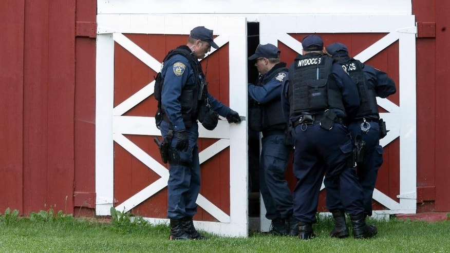 New York State Department of Corrections Officers search a barn in Owls Head, N.Y. for convicted murderers Richard Matt and David Sweat, Friday, June 26, 2015. Police shifted a focus of their three week search closer to the Canadian border. (AP Photo/Mary Altaffer)