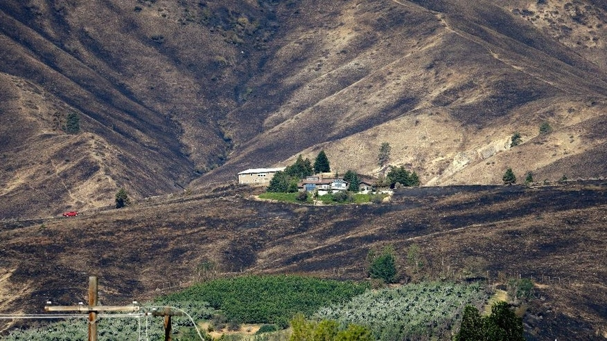 An untouched home stands surrounded by burned-out hillsides Tuesday, June 30, 2015, in Wenatchee, Wash. Two dozen homes were destroyed in a fast-moving wildfire Sunday night in Wenatchee. A handful of businesses also were destroyed when flames spread to the downtown core. (AP Photo/Elaine Thompson)