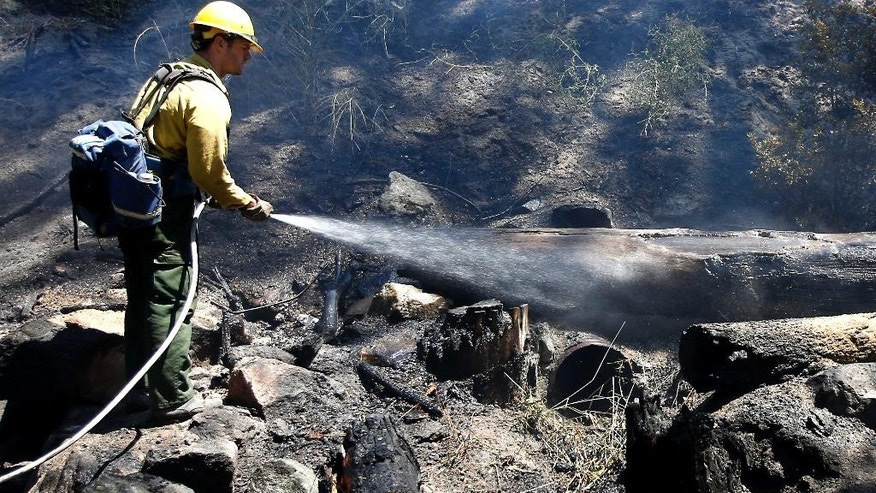 Firefighter Kevin Cason waters down a hot spot while working on the Kyburz fire near Kyburz, Calif., Friday, July 24, 2015. Crews on Friday had partially surrounded the fire that shut down a highway linking Sacramento and Reno, Nevada, and led to a handful of evacuations. The blaze broke out Thursday afternoon near South Lake Tahoe and has charred more than 100 acres in heavy timber along steep canyon walls. (AP Photo/Rich Pedroncelli)