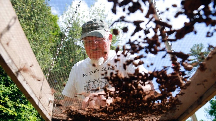 In this Thursday, July 23, 2015 photo, Don Thompson sifts soil while searching for artifacts at archaeological dig at a dig at Lake George Battlefield Park in Lake George, N.Y. (AP Photo/Mike Groll)
