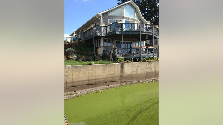 In this Wednesday, Aug. 26, 2015 photo, Enid Letourneau, left rear, looks from the deck of her cottage in Georgia, Vt., at the blue-green algae in St. Albans Bay on Lake Champlain. The town recently reduced the value of 34 homes along the shore by $50,000 each because of the algae, which can be toxic to humans and dogs. (AP Photo/Lisa Rathke)