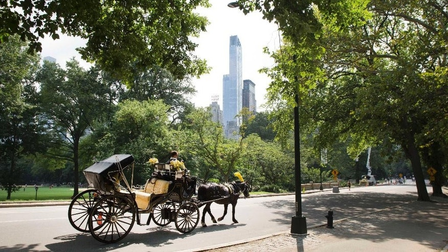 FILE- In this Sept. 1, 2015 file photo, a horse-drawn carriage moves along the West Drive in New York's Central Park. Security will be tight along the route Pope Francis travels through the park as he makes his way to Madison square Garden to celebrate mass on Saturday, September 25. The pope's visit to New York City later this month will likely raise security issues and costs to new heights in a city where protecting a dignitary is an art and a point of pride. (AP Photo/Mark Lennihan, File)