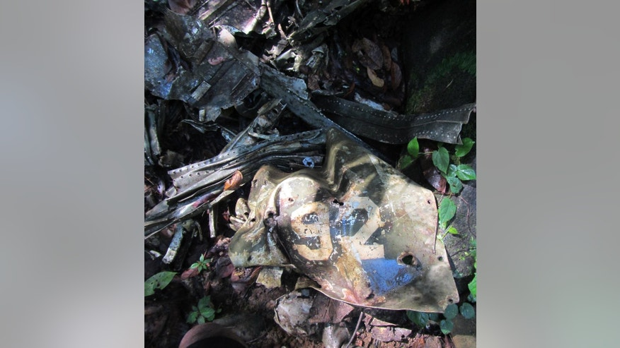 This 2014 photo provided by Pacific Wrecks shows the number 92 from a World War II airplane at the crash site where it went down in Papua New Guinea (PNG). Justin Taylan founded Pacific Wrecks 20 years ago after visiting crash sites and battlefields with his grandfather, a WWII veteran. Since then, the 37-year-old Hyde Park, N.Y., native has visited PNG dozens of times to search its dense jungles for wreck sites and is wrapping up a two-year contract with the Pentagon to help find the remains of Americans still listed as missing in action there. (Sam Bruce/Pacific Wrecks via AP)