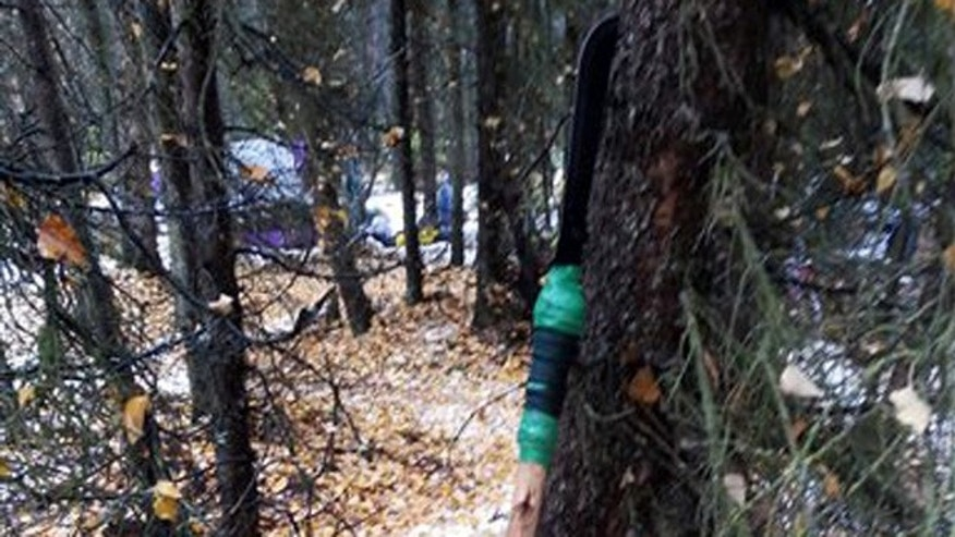 Oct. 2, 2015: This photo provided by the Alaska Department of Fish and Game shows a homemade spear that a homeless man used to kill a black bear cub that was sniffing around for food in an illegal camp site in Anchorage, Alaska.
