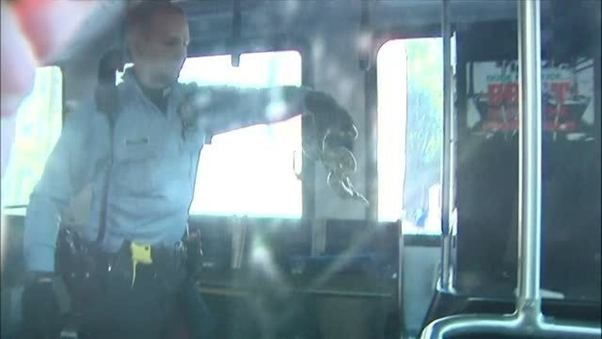 A loose boa constrictor forced passengers to evacuate a Philadelphia bus. (WTXF)