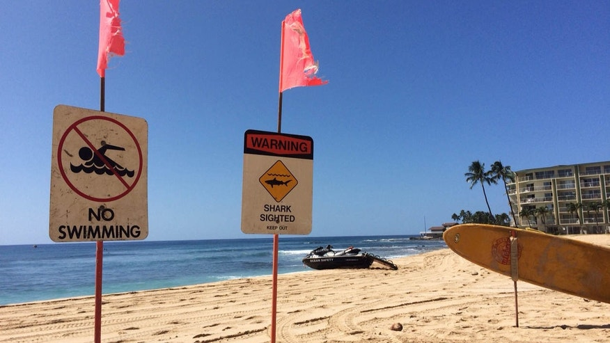 Oct. 29, 2015: Signs warning of a shark sighting are posted at Makaha Beach Park in Waianae, Hawaii.