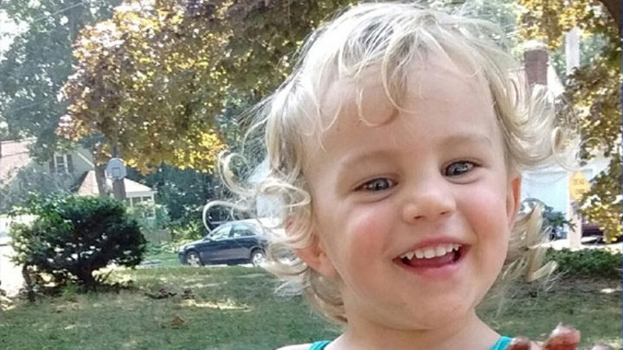 Lyndon Albers, 2, was kidnapped from home Friday, Nov. 20, 2015, by ex-babysitter, police say. (Massachusetts State Police)
