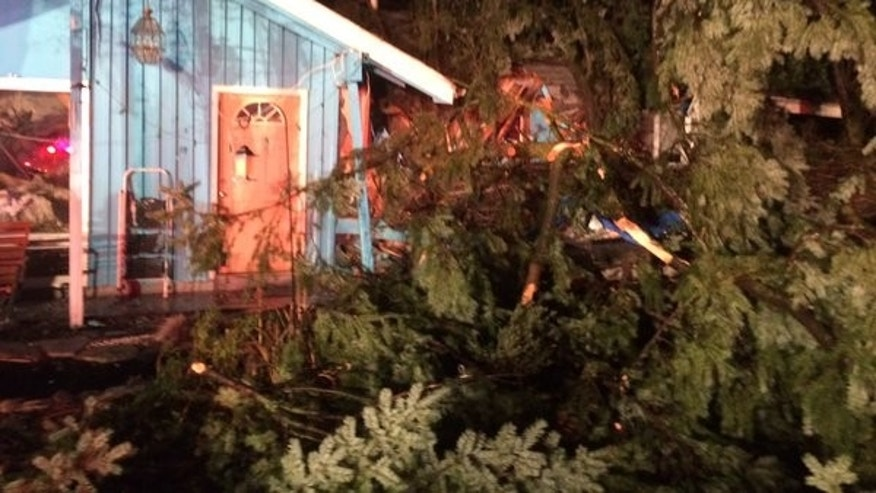 A tree fell on a home in Portland, killing a woman.