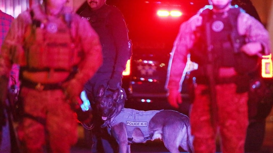 Officers with a K-9 unit surround apartments.