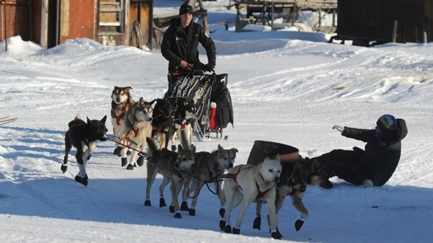 Dallas Seavey winning his second Iditarod in 2014.