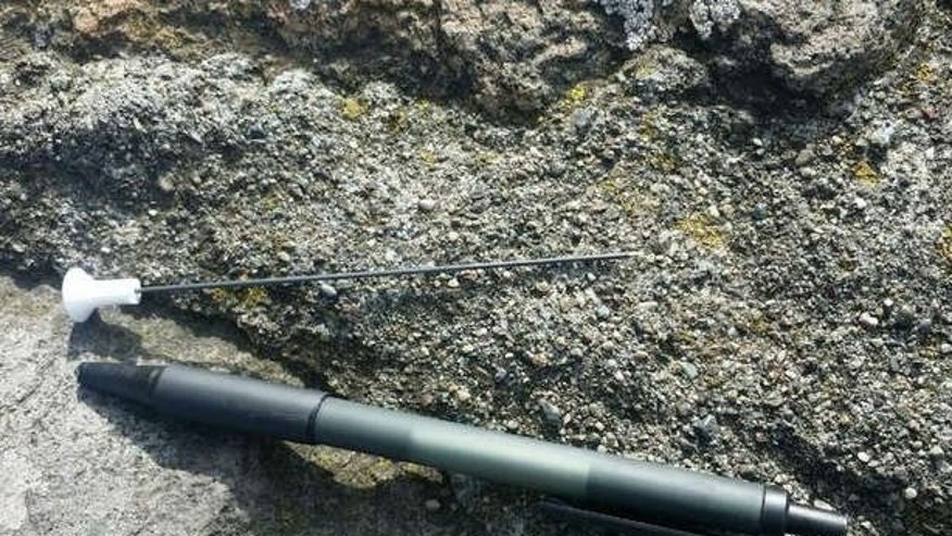 Photo shows a blow dart that struck a pedestrian walking on the Golden Gate Bridge.