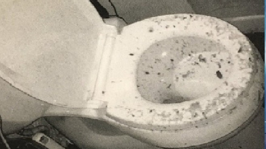 Baltimore woman sues over exploding toilet. (Fox 45)