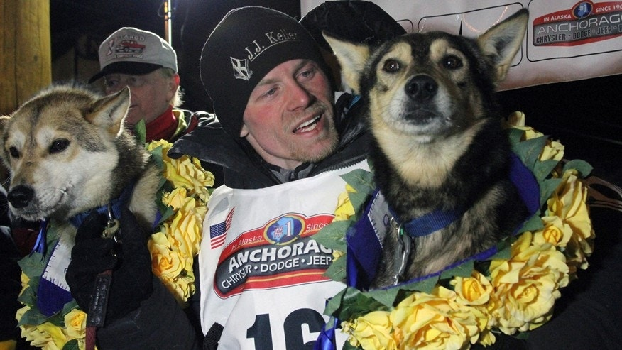March 15, 2016: Dallas Seavey poses with his lead dogs Reef, left, and Tide after finishing the Iditarod Trail Sled Dog Race, Tuesday, March 15, 2016, in Nome, Alaska.