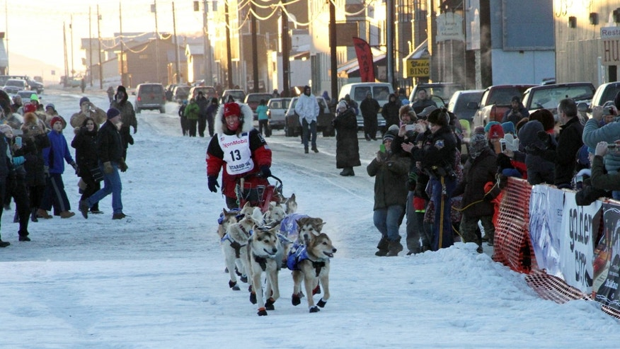 Musher Aliy Zirkle drives her dog team to the finish line of the Iditarod Trail Sled Dog Race on Tuesday.