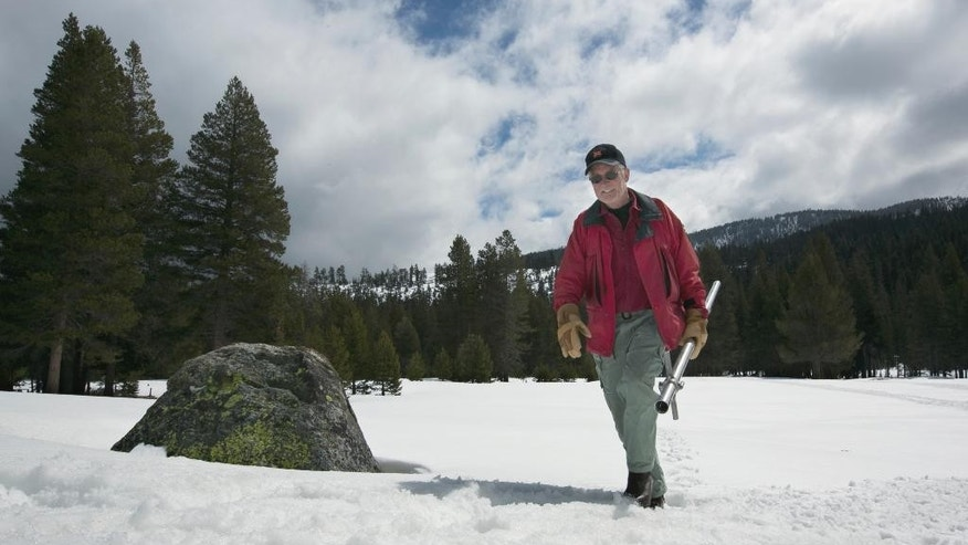 Frank Gehrke, chief of the California Cooperative Snow Surveys Program for the Department of Water Resources, leaves the snow covered meadow after conducting the snow survey at Phillips Station near Echo Summit, Calif., Wednesday, March 30, 2016. The survey showed the snowpack at about 95 percent of normal for this site at this time of year. (AP Photo/Rich Pedroncelli)