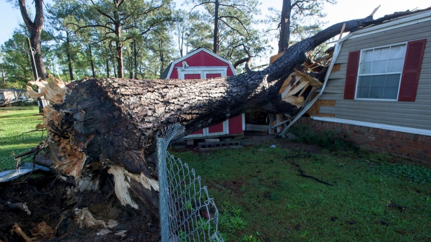 A tree crashed through a mobile home in the Pike Road Village community in Pike Road, Ala.