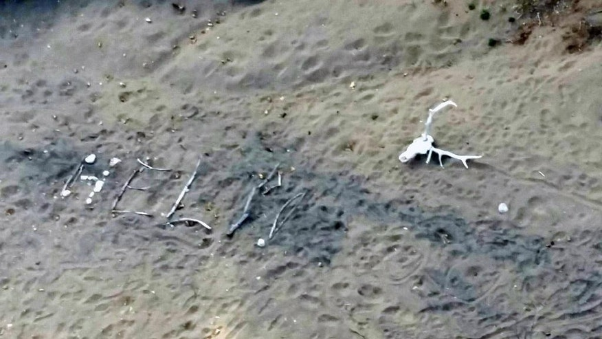 "This aerial photo taken Saturday, April 9, 2016, and provided by Arizona Department of Public Safety shows, a ""help"" sign made by Ann Rodgers, 72, in the White Mountains of eastern Arizona. Rodgers got lost after her hybrid car ran out of gas and battery on March 31. She survived in the forest for nine days by drinking pond water and eating plants. Authorities came across her dog April 9, and a DPS flight crew spotted a ""help"" signal made of sticks and rocks on the ground. Rodgers had left the area, but she was found on a reservation that's home to the White Mountain Apache Tribe after starting a signal fire.  (Arizona Department of Public Safety via AP)"