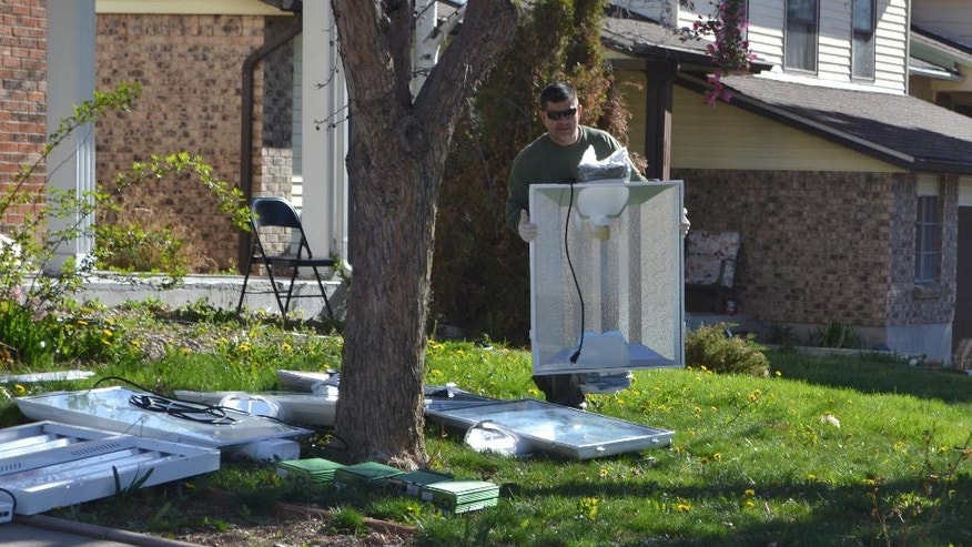 An investigator carries a grow light out of a home in which an illegal-grow operation for marijuana plants was set up in Aurora, Colo., early Thursday, April 14, 2016.   Investigators have raided several homes and warehouses throughout the Denver area as part of a multi-state investigation into the illegal distribution of marijuana outside Colorado.  (AP Photo/P. Solomon Banda)