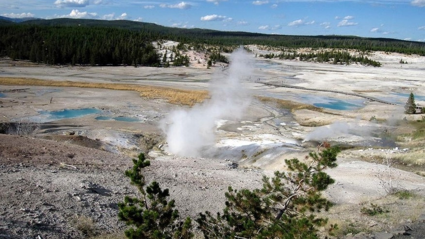 FILE - This September 2009 file photo shows the Norris Geyser Basin in Yellowstone National Park, Wyo. U.S. authorities will not try to force four men accused of walking onto a sensitive hot spring at Yellowstone National Park to return from their homes in Canada for prosecution, a spokesman for the U.S. Attorney's Office in Wyoming said. The men are charged with misdemeanors that don't meet the legal standard to force their return to face prosecution, spokesman John Powell said. (AP Photo/Beth Harpaz,File)