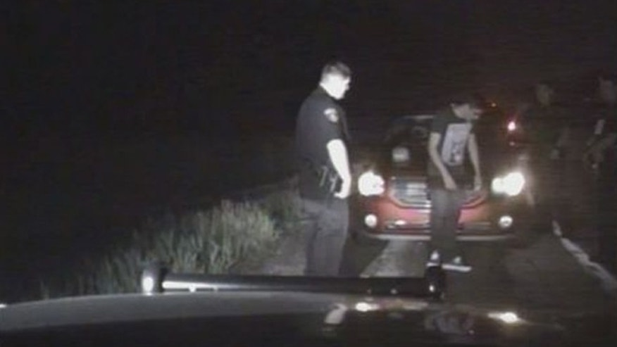 Police dashcam video shows drunk driving suspect Aaron Zueno outside his vehicle. (Fox 2 Detroit)